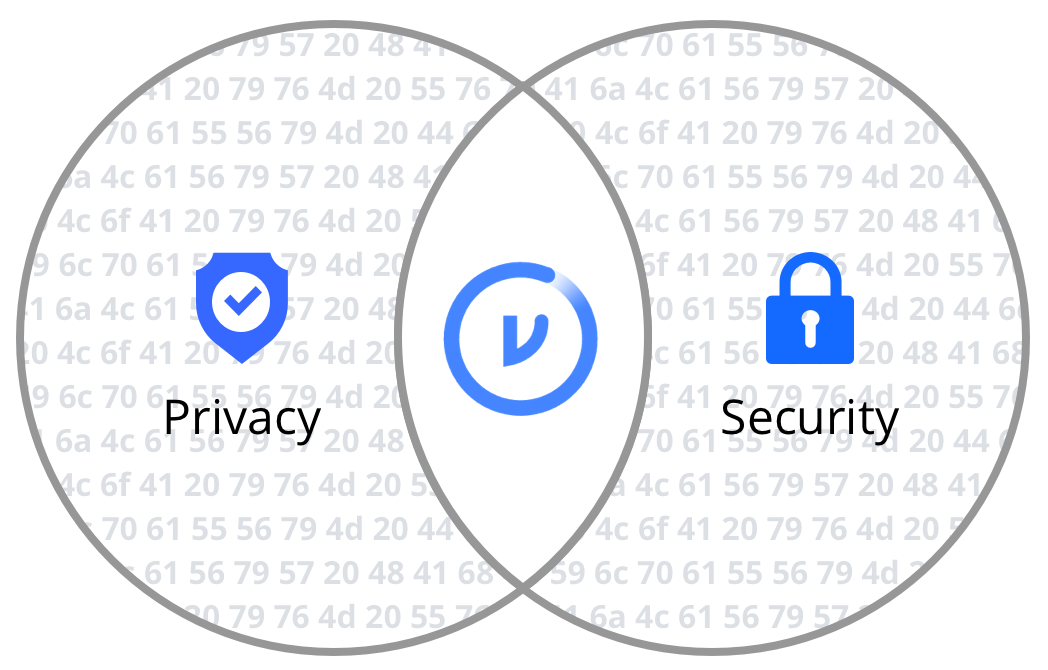 The intersection of privacy and security.