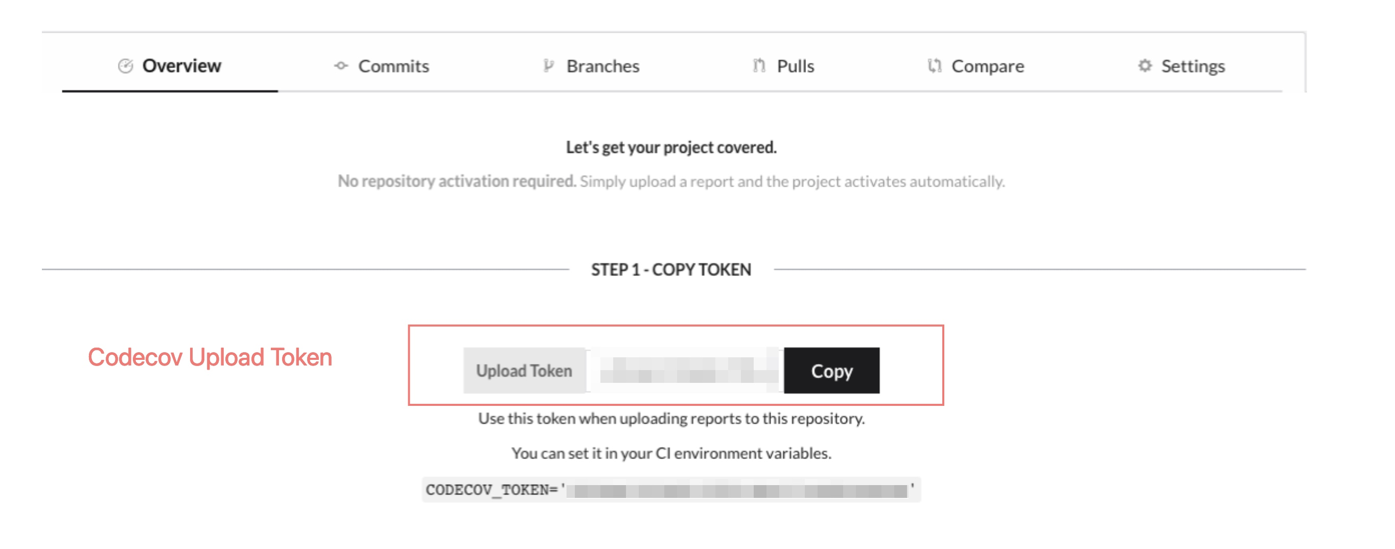 A repository on codecov with no uploaded coverage reports. Note the upload token.