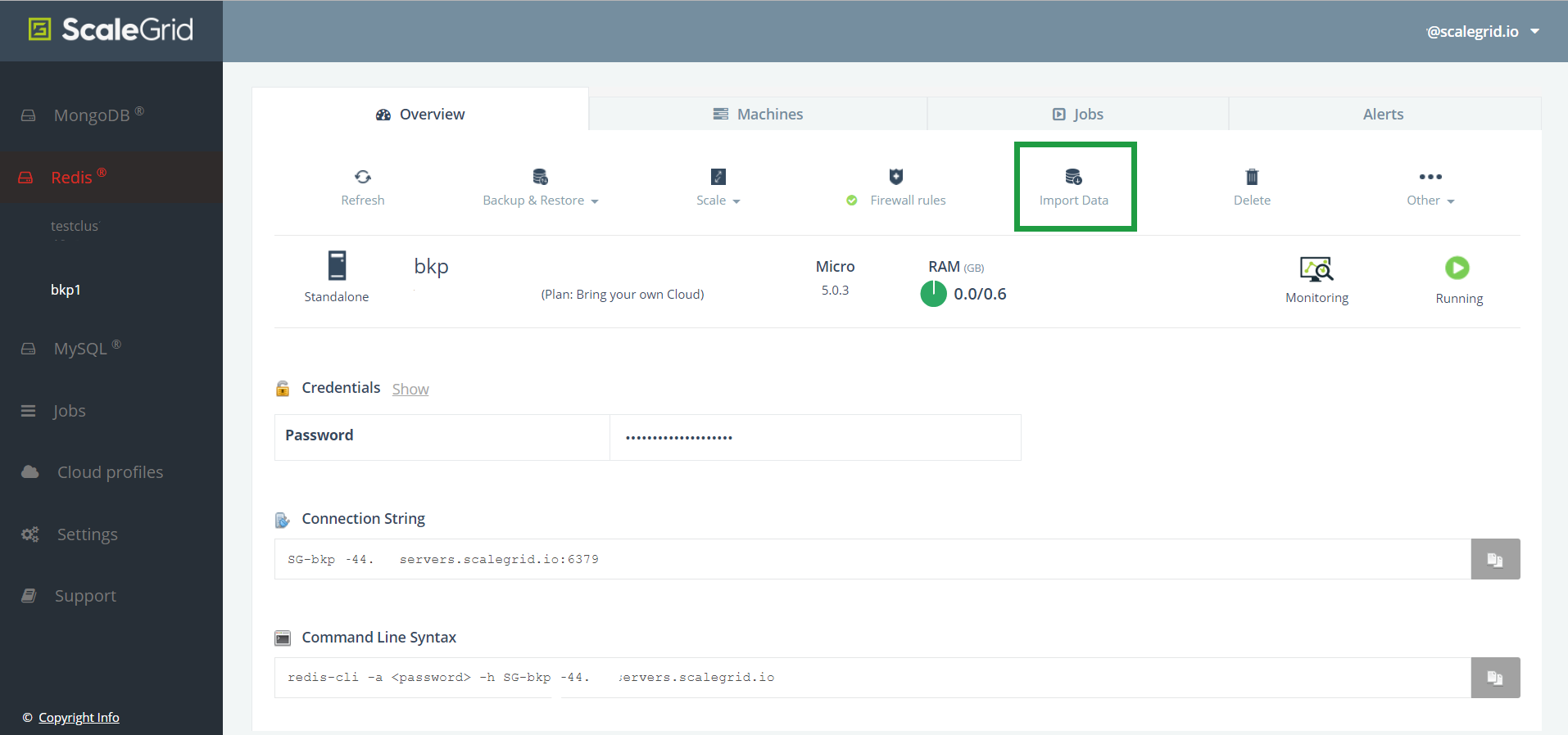 Find your Import Data button on your Redis™ cluster details page.