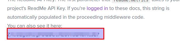 API key in docs