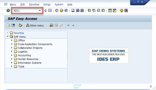 Enabling SAP GUI Scripting