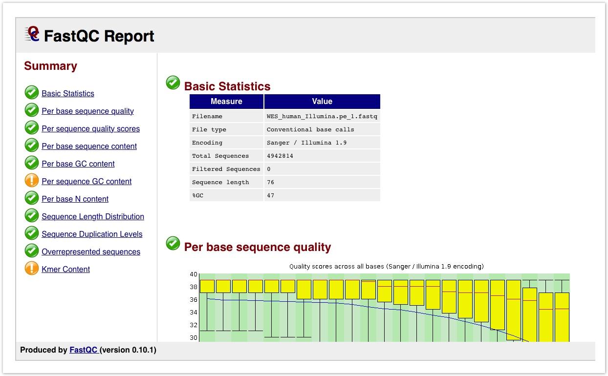 FastQC Report