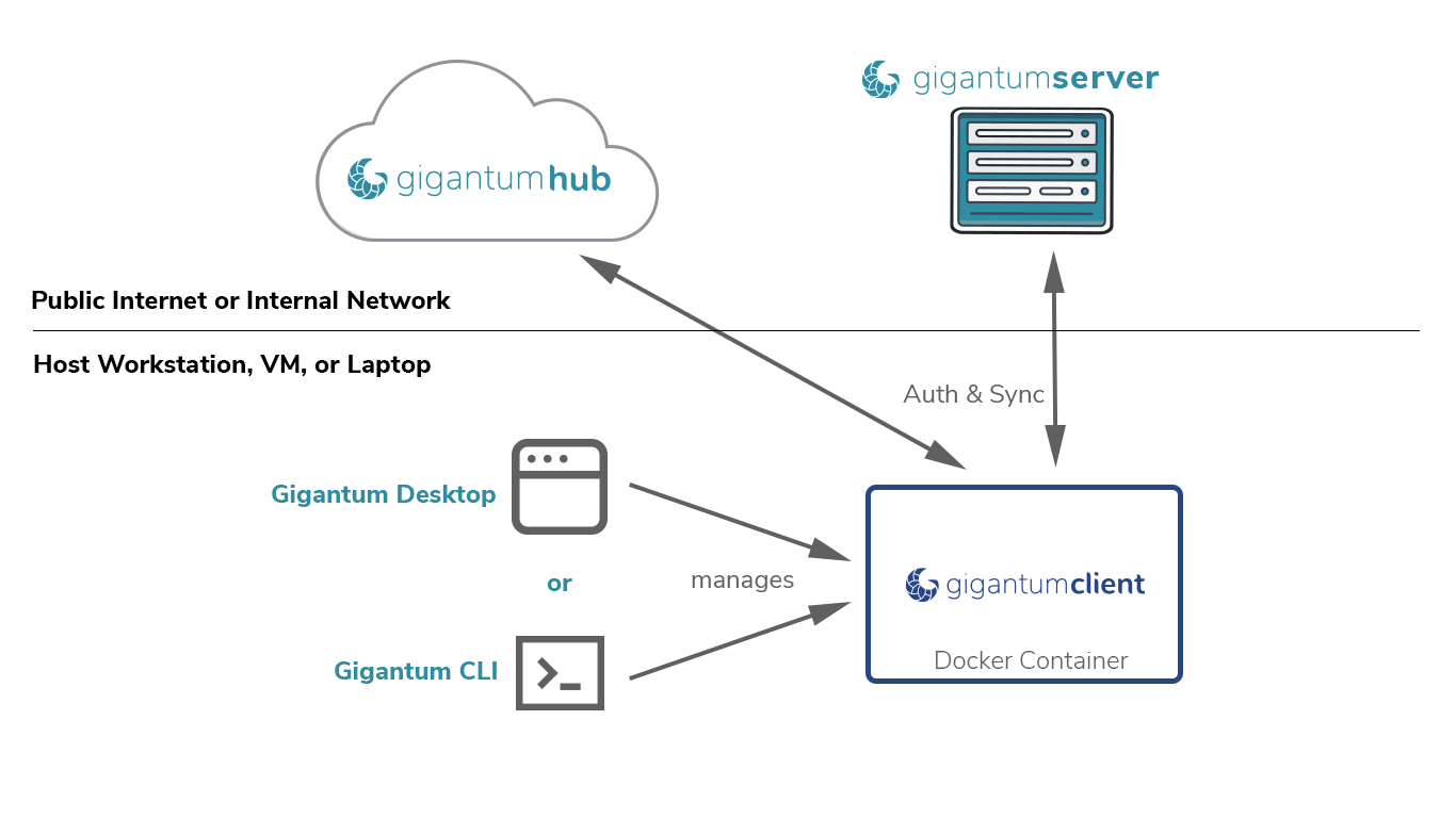 Software and Services that make up the Gigantum Platform
