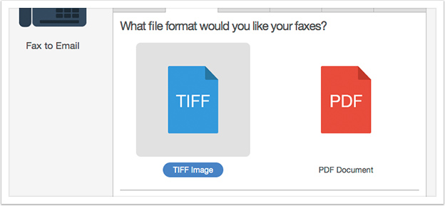 Choose the desired file format