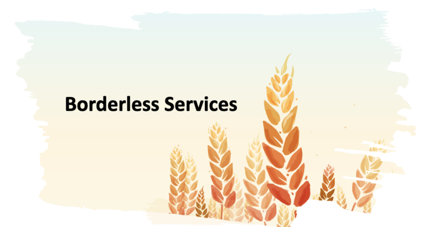 Borderless Services Inc.