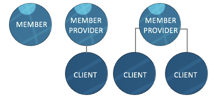 Relationship between members, providers, and clients