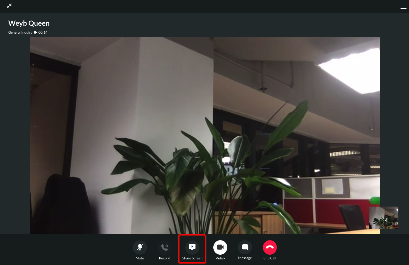 Video Call - Screen Sharing