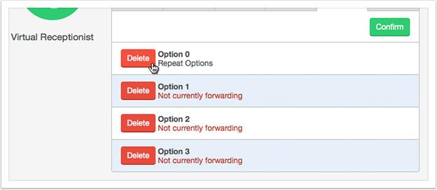 Click the 'Delete' button to remove the option