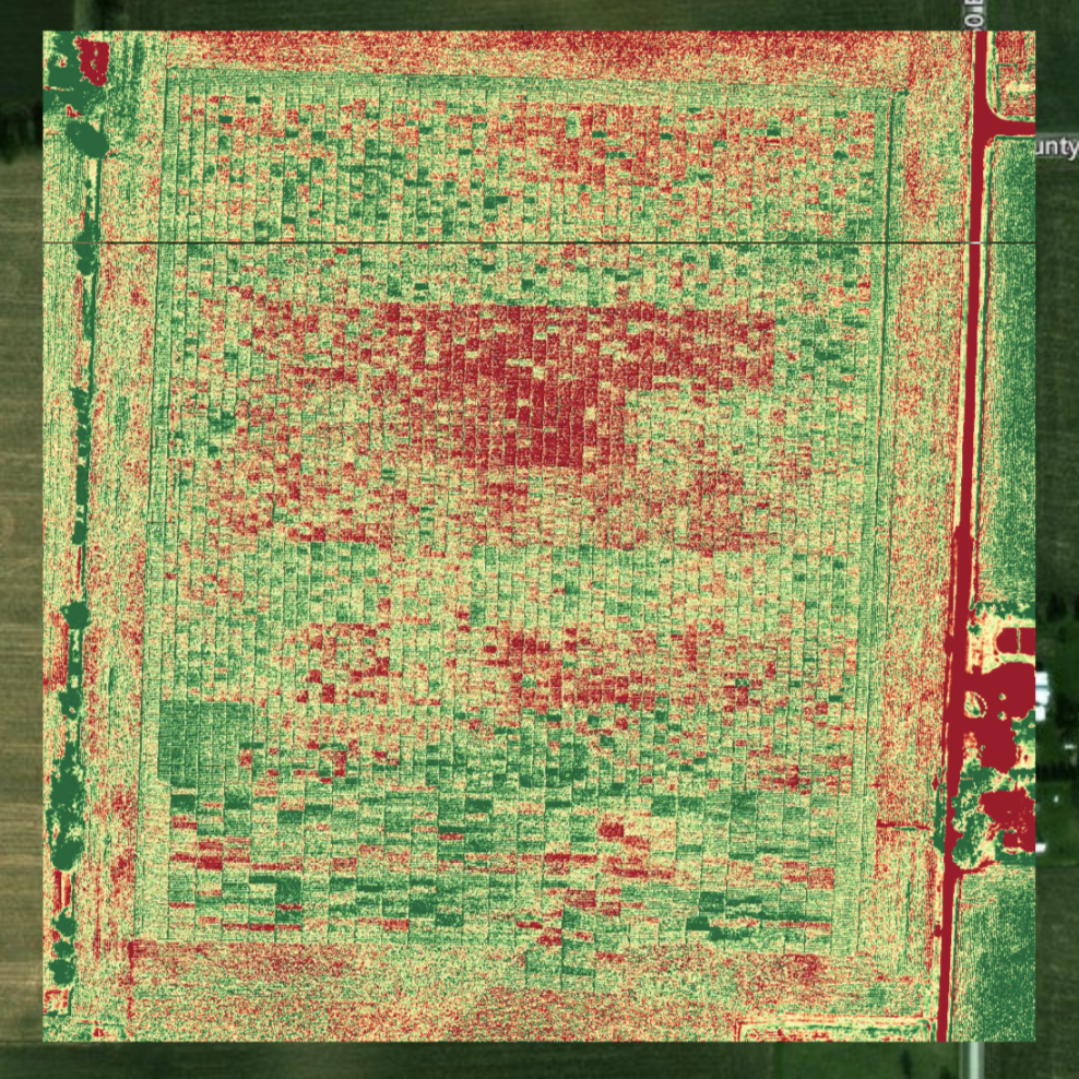 Notice the darker reds that create more contrast compared to the above NDVI image.