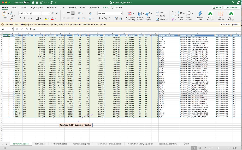 Screenshot of the Excel Report