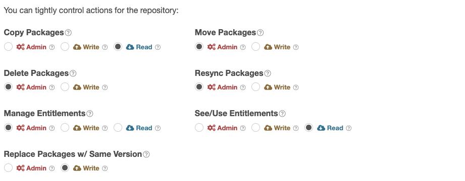 Repository Privileges