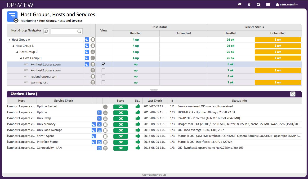 Host Groups, Hosts and Service Checks with one Host selected