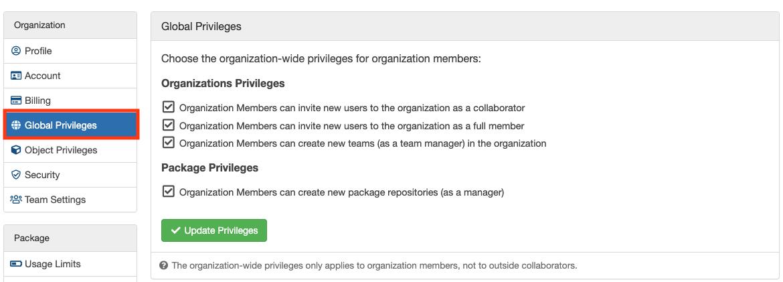 Organization Global Privileges