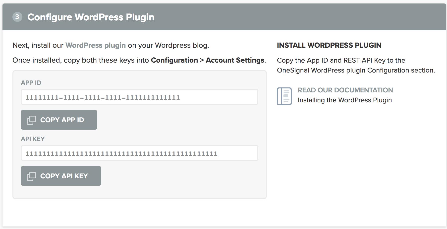 WordPress Setup