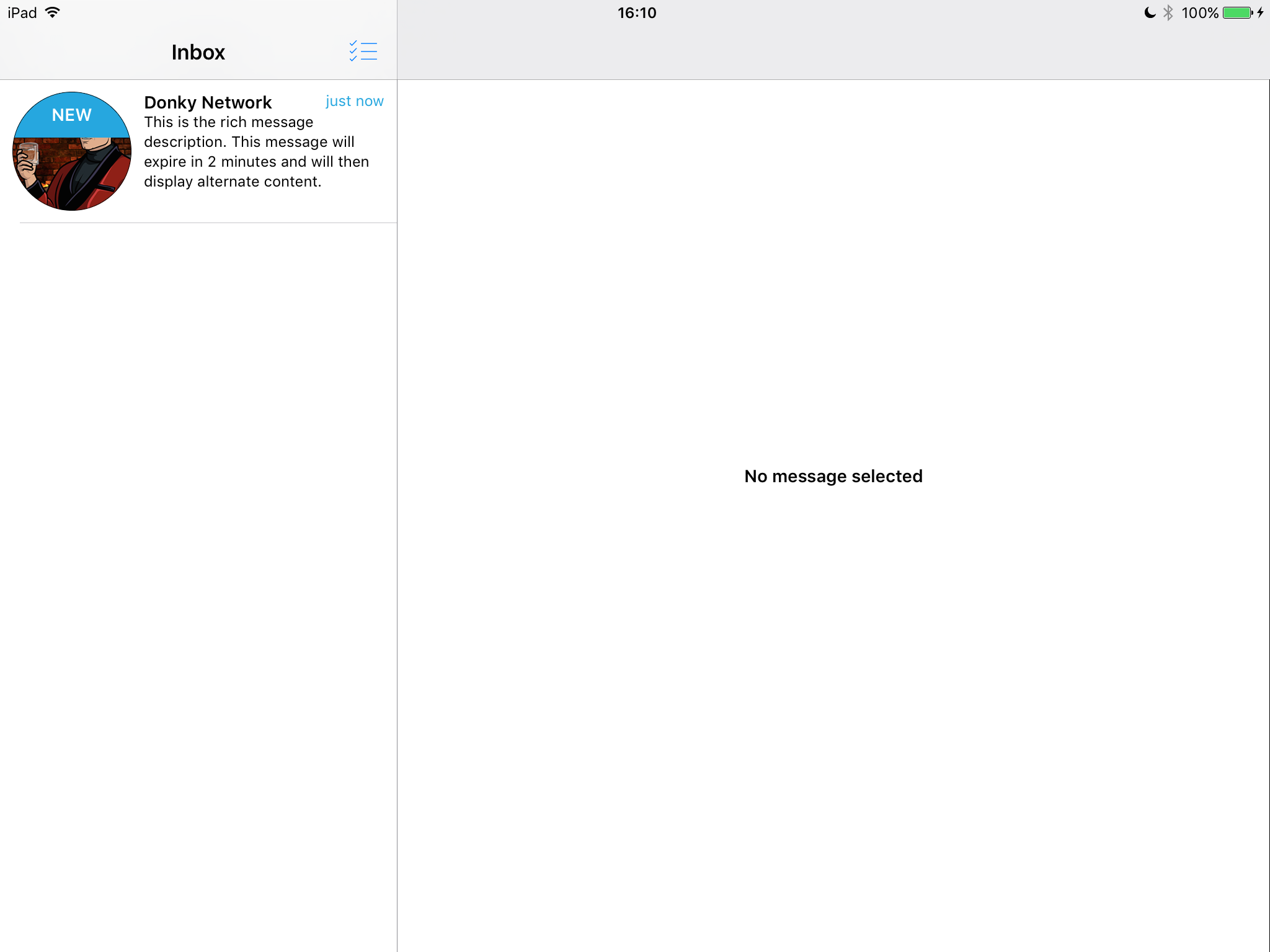 An example of the rich inbox split view on an iPad, iOS 7.0 in Landscape. With an unread and un selected rich message.