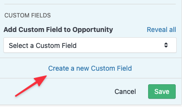 Creating an Opportunity Custom Field on the Lead Page