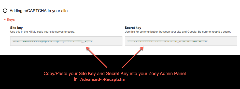 reCAPTCHA Site and Secret Keys