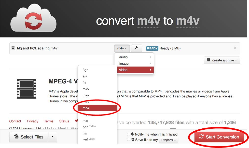 Select ***.mp4*** format and click ***Start Conversion***