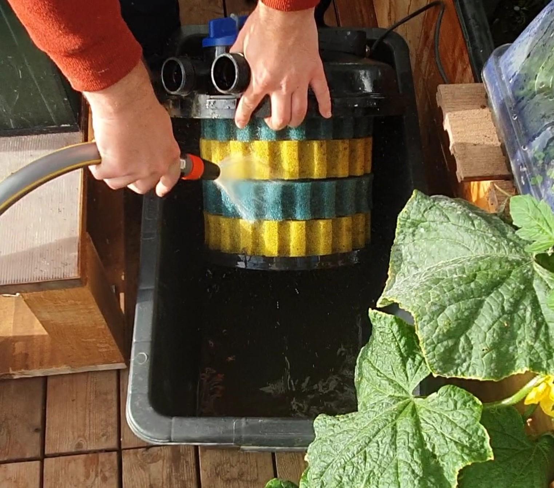 Nettoyage des mousses filtrantes