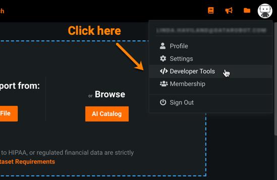 """Click """"Developer Tools"""" in the drop-down menu"""