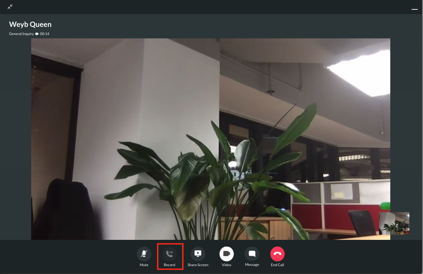 Record the video call