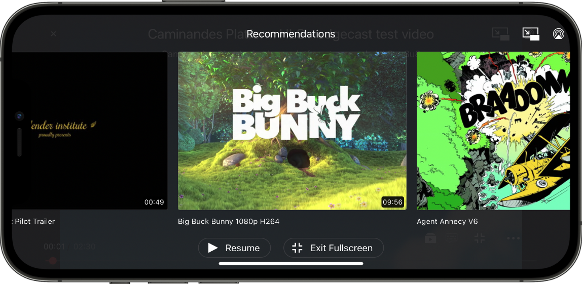 Screenshot of Recommendations view