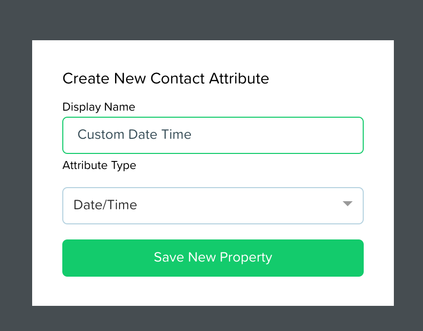 """Setting the display name or label for our new attribute called """"Custom Date Time"""""""