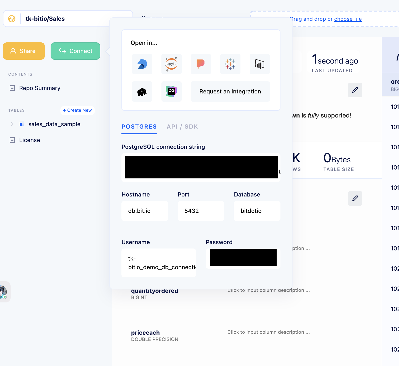 The Connect menu in your bit.io repository, which has everything you need to connect to your data.