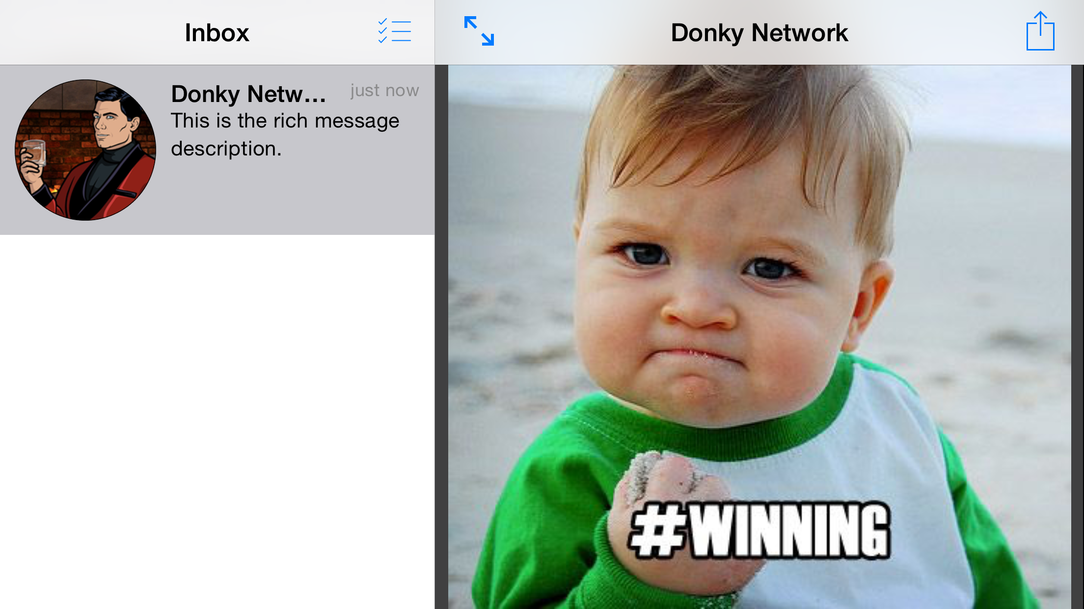 Example of a rich message being displayed on an iPhone 6+, iOS 8.4 in Landscape.