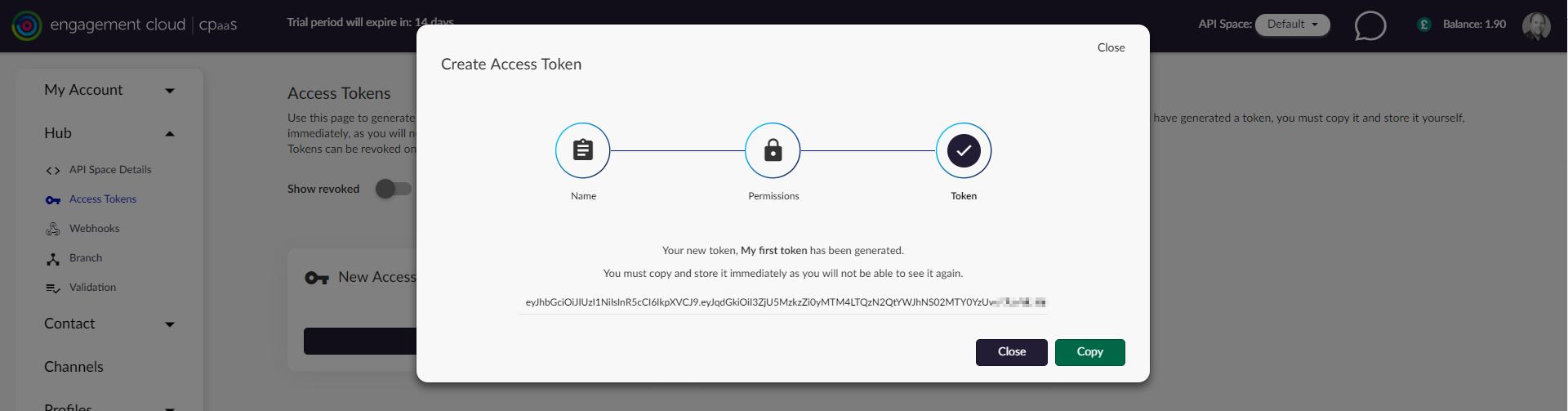 Ensure you copy your access token