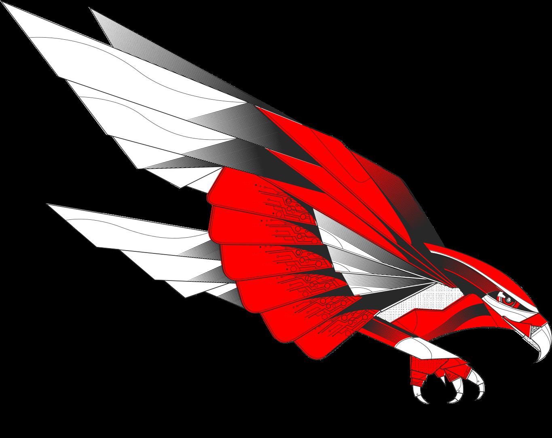 Falcon Code