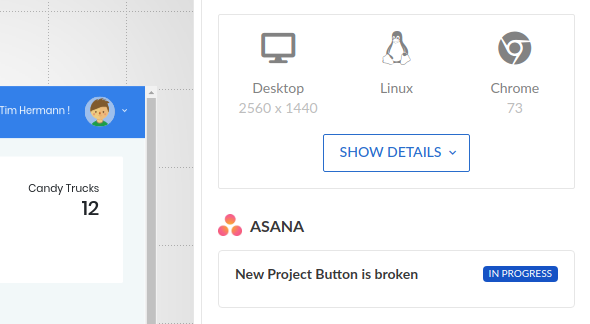Screenshot page with a link to a task in Asana.