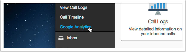 Click the 'Google Analytics' link in the left hand menu