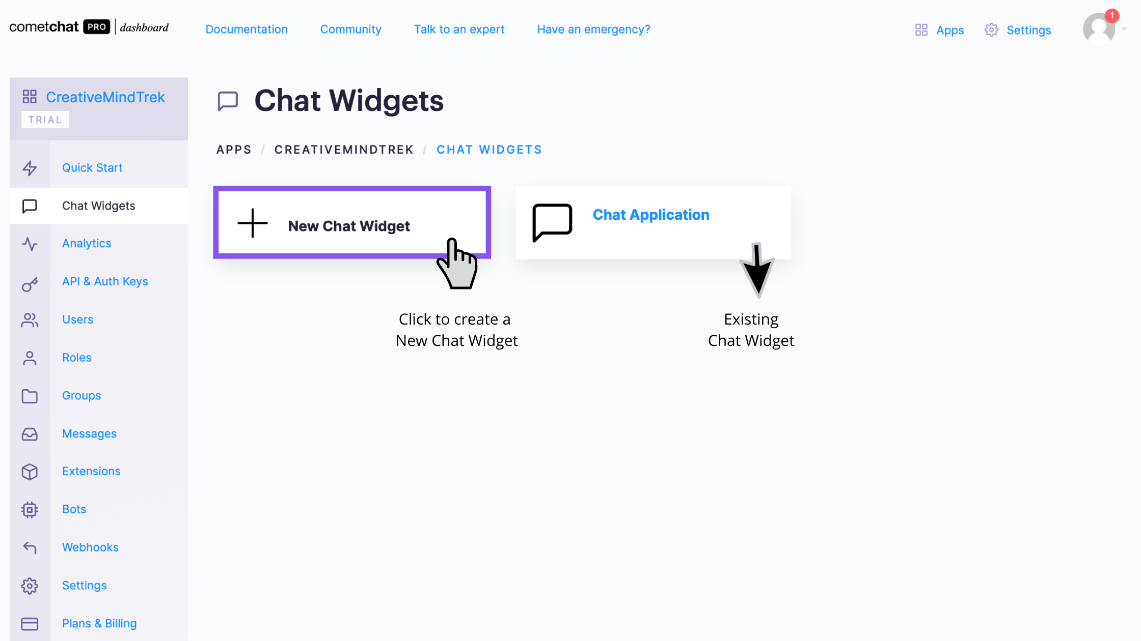 Chat Widget Page