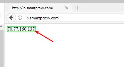 Parsehub test proxy IP example
