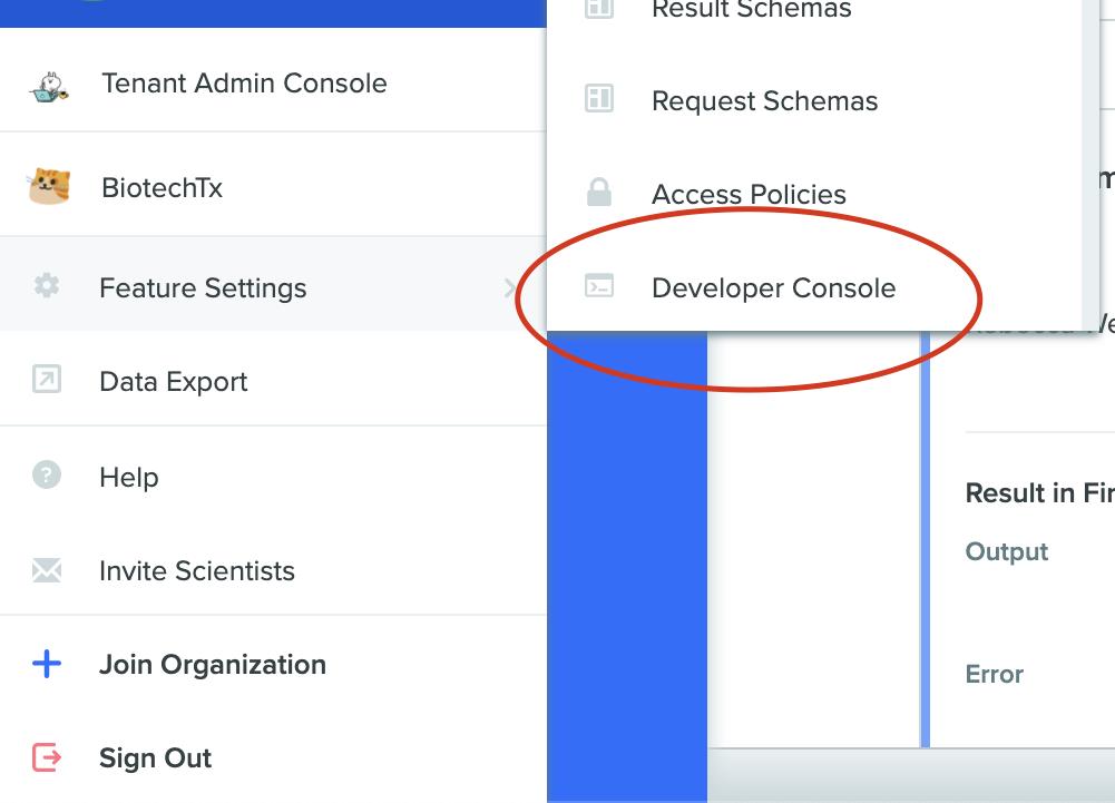 Developer Console Settings