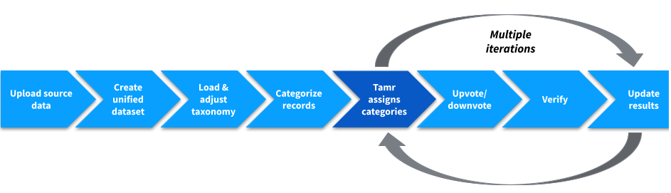 Categorization project workflow. The process of data mastering. Step 5 is a darker shade of blue to indicate that Tamr completes this step.