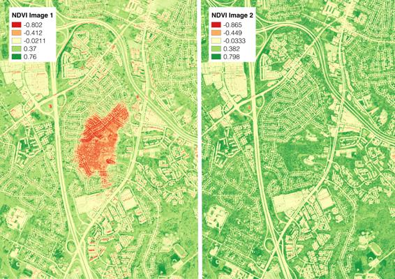 Before: NDVI from 2 different WorldView 2 image dates
