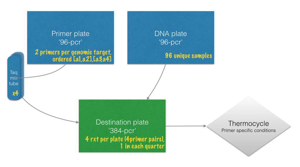 PCR workflow with experiment specific notes