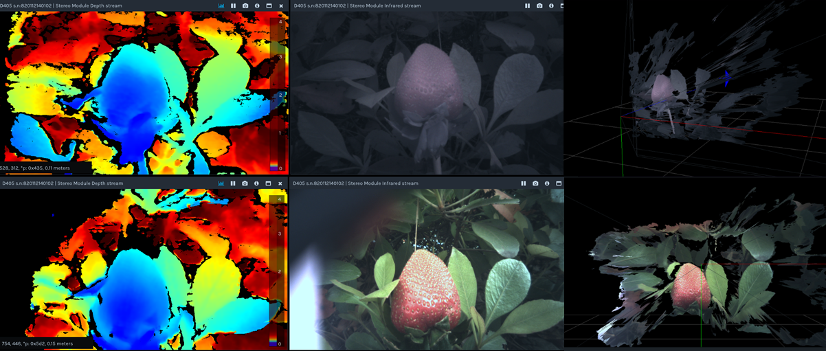 Figure 8. Example of the use of an IR-cut (short-pass) filter. A short baseline Intel RealSense camera is used to capture depth of a strawberry placed among plant leaves in a shaded outdoor environment. Shown are the depth map (Left), left RGB camera image (Middle), and 3D Point Cloud images with left camera texture overlay (Right). The top images correspond to the camera used without filter, and the bottom is the same scene but with IR-cut filters placed in front of the stereo cameras. The improvement in the RGB image and 3D texture quality is obvious. In fact, there is also slight resolution improvement in the depth image (e.g., some of the leaf veins are resolvable) due to the increased contrast.