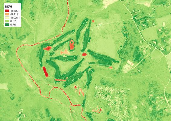 After: WorldView 2 image after applying an NDVI.