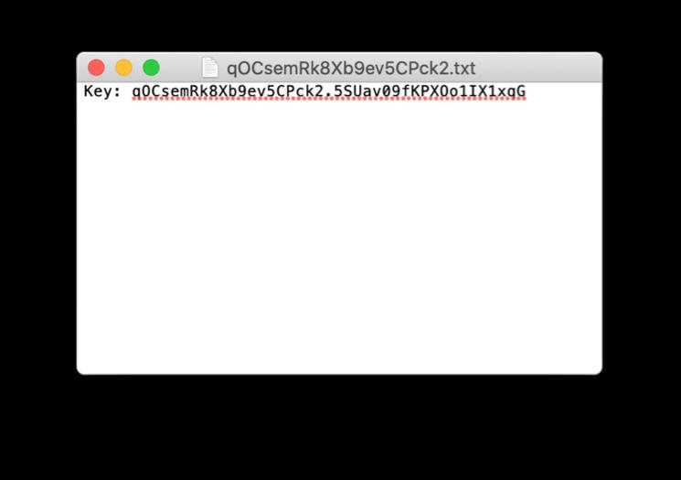An example of a Modzy API Key