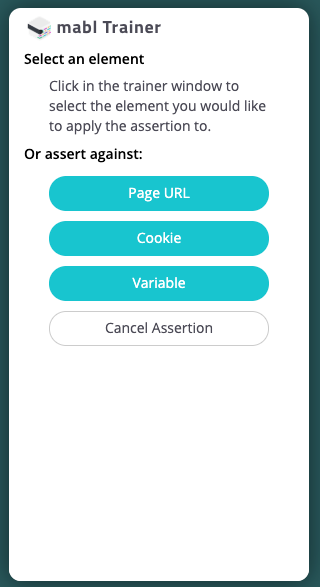 assertion options