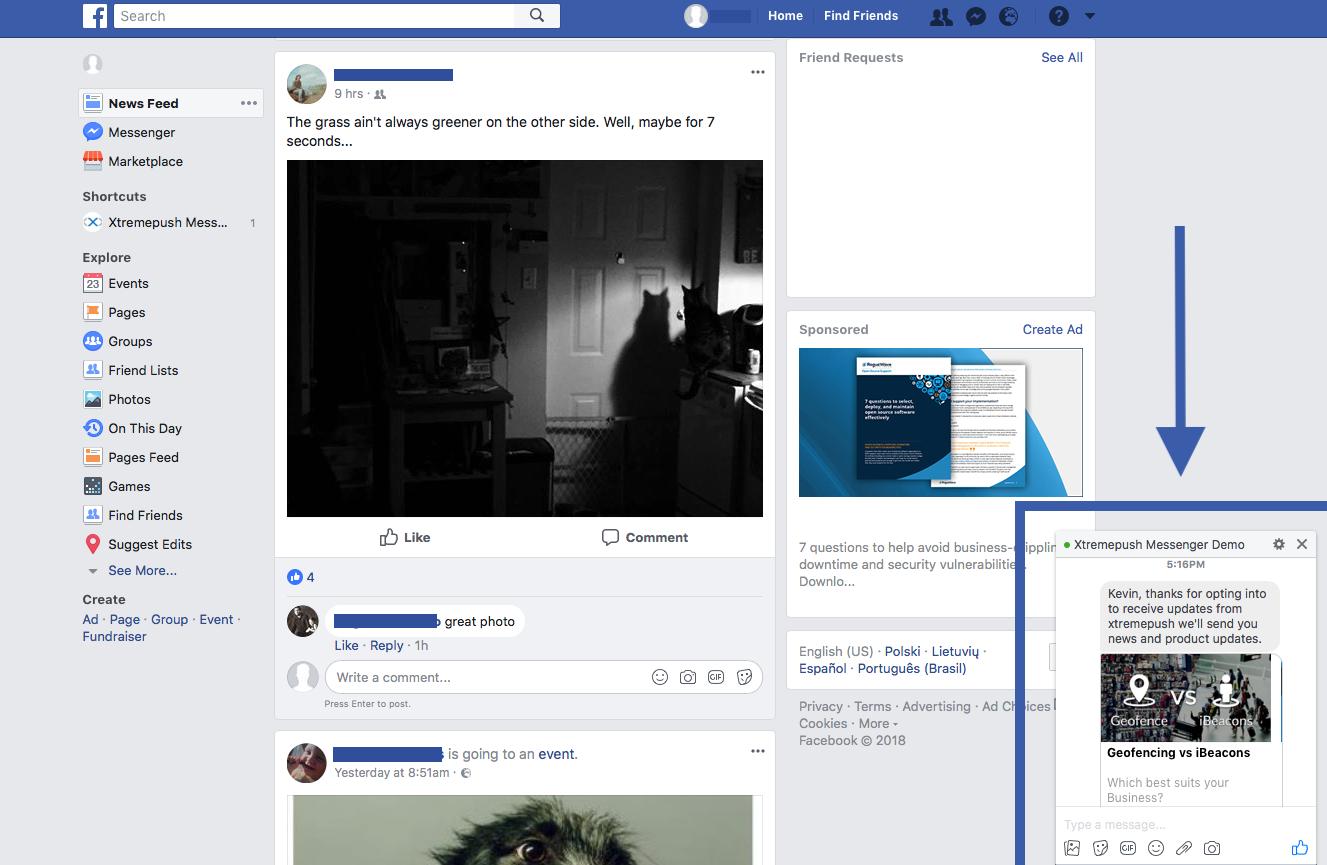 FB rich message web view.