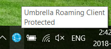 Download and Install the Roaming Client