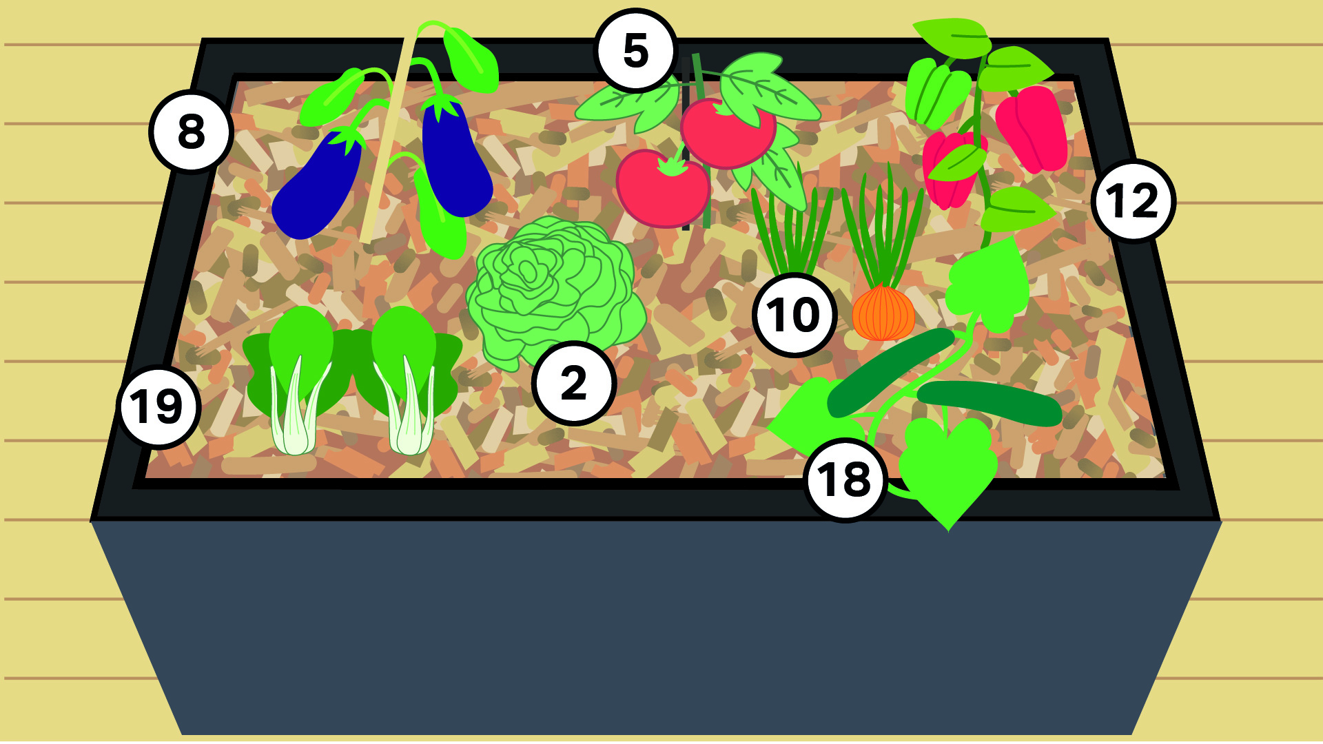 8 - Aubergine 5 - Tomate 12 - Poivron 19 - Blette 2 - Laitue 10 - Oignon 18 - Concombre