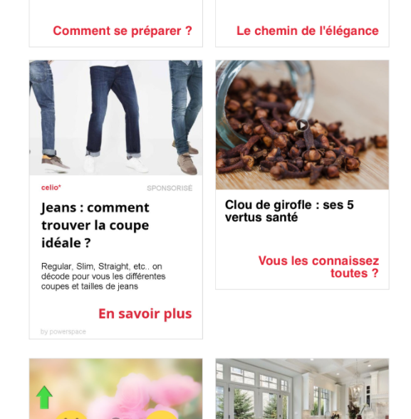 Exemple de formats Native Ads sur une newsletter