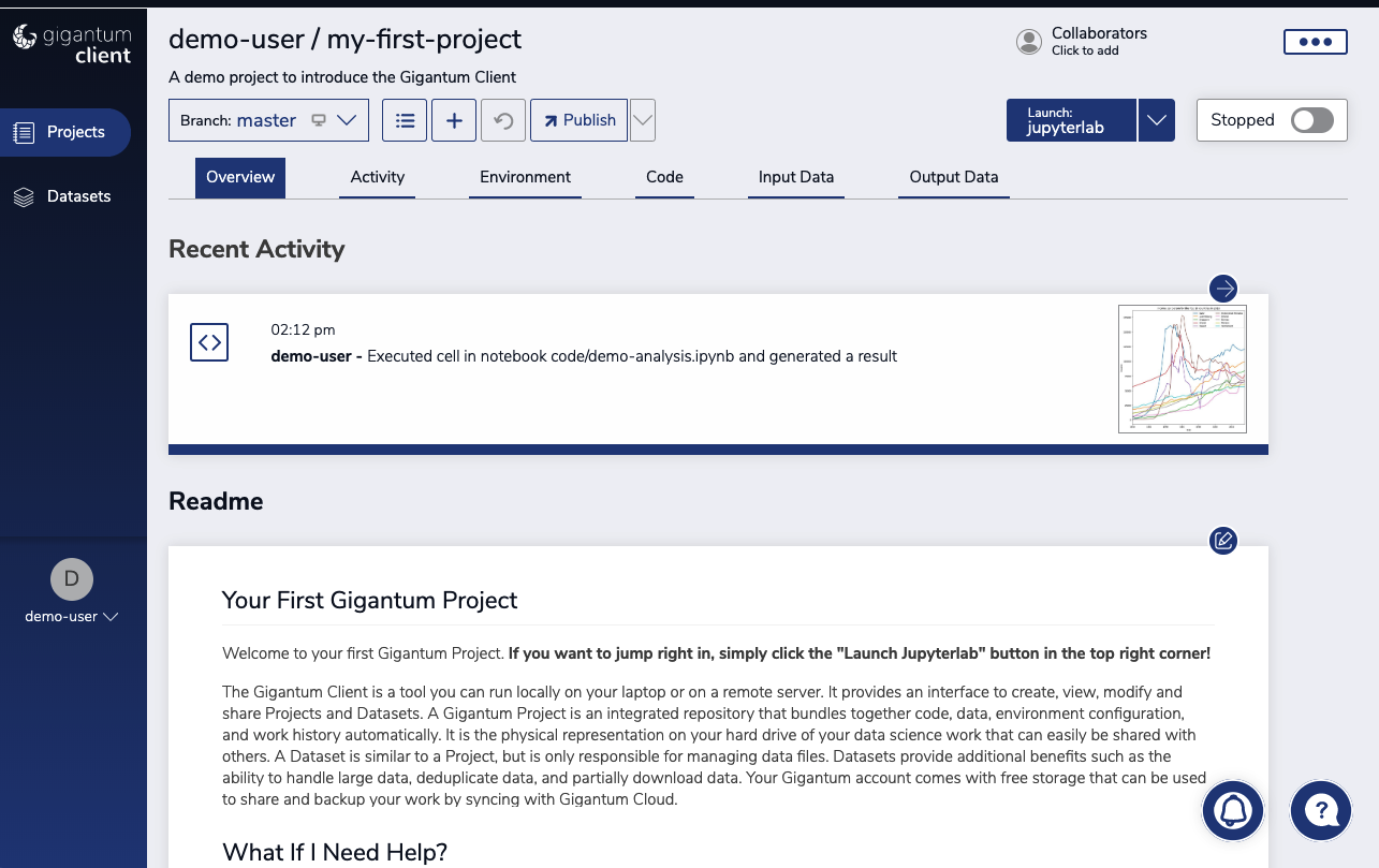 Overview of a Gigantum project displayed in the Client