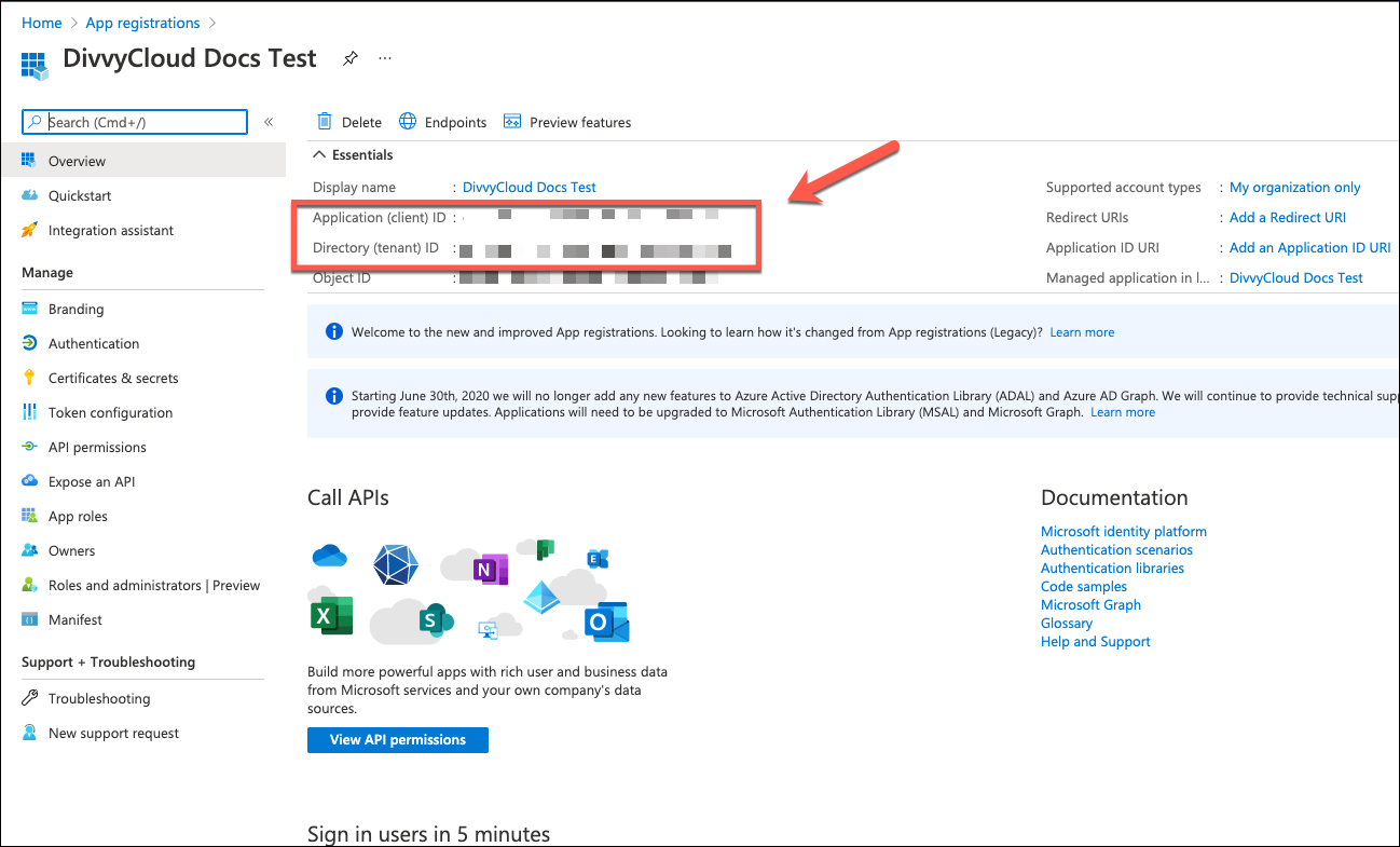 Azure Portal - App Preview (details for Application and Tenant ID)