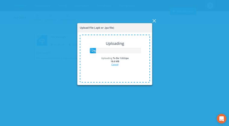 Creating Enterprise App Store Items